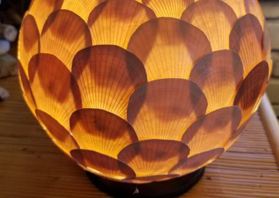 Scallop Lamp